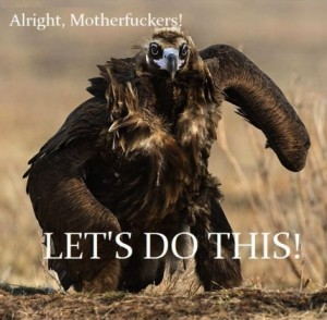 Allright, lets do this!
