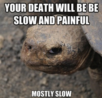 death slow and painful