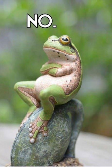 frog_no