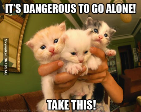 it is dangerous to go alone - cats